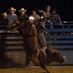Charlotte Frontier Days Rodeo